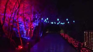 麦克赛尔激光工程投影机打造精品夜游项目